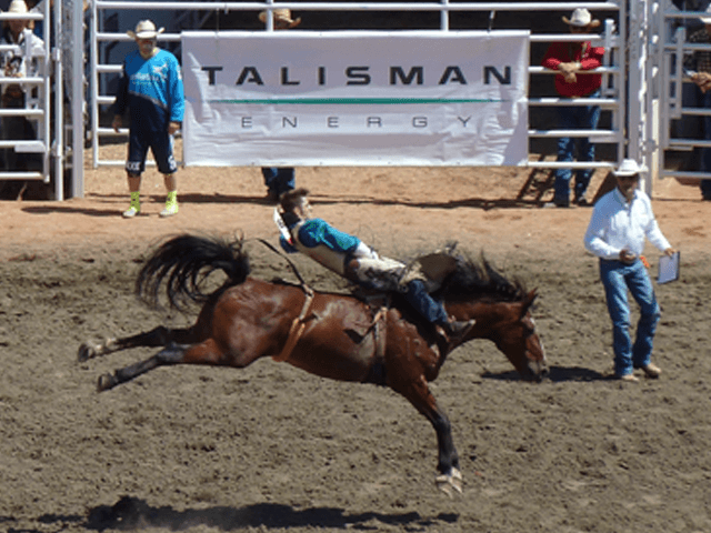 Stampede_Rodeo