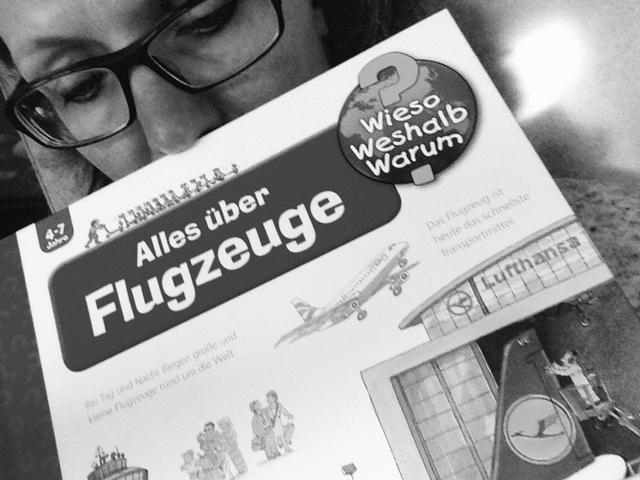 Gedanken-zum-Flugzeugabsturz-A320_Germanwings_small