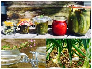 Kochen und Konservieren von Kraeutern, eigener Anbau von Kraeutern nd Gemuese