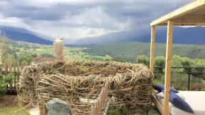 Nest mit Blick über ein Tal