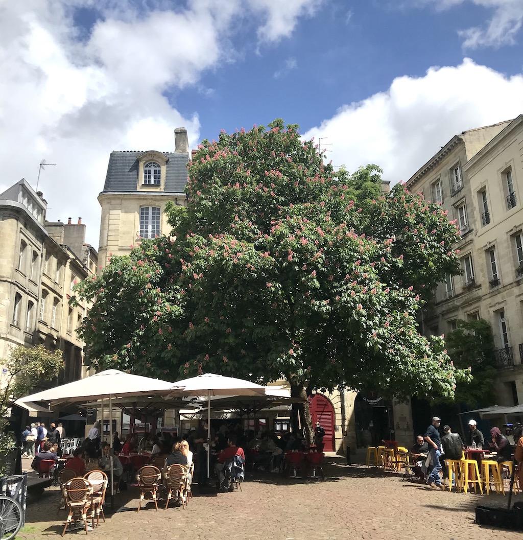 Cafés in Bordeaux