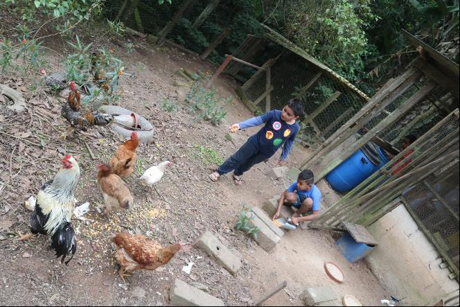 Tiere und Mateo von Kinder in Not